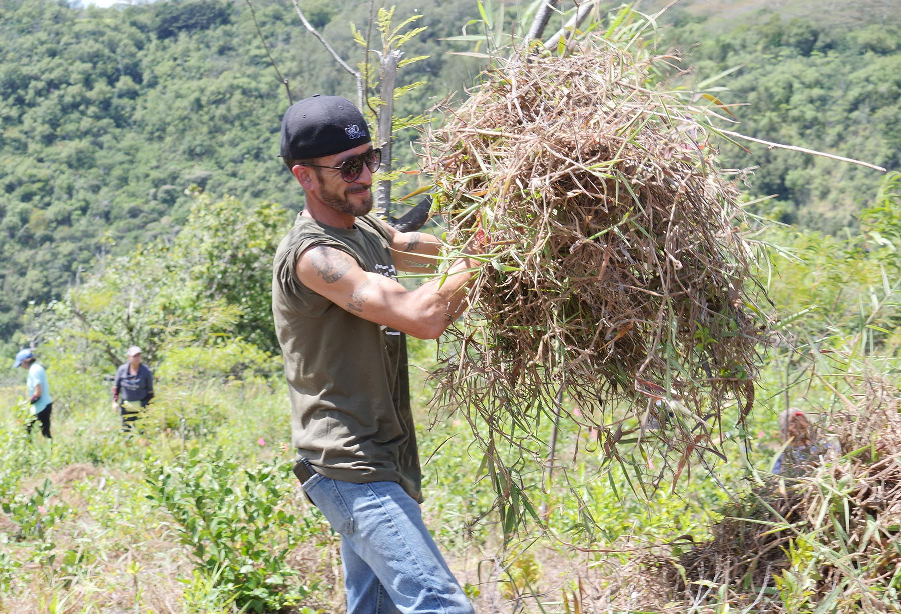 <p>Volunteer Shan Shamim of Honolulu moves a pile of invasive weeds. The regularly scheduled workdays are meant to care for and protect rare and endangered species of plants and animals in the valley and are open to volunteers ages 12 and up.</p>