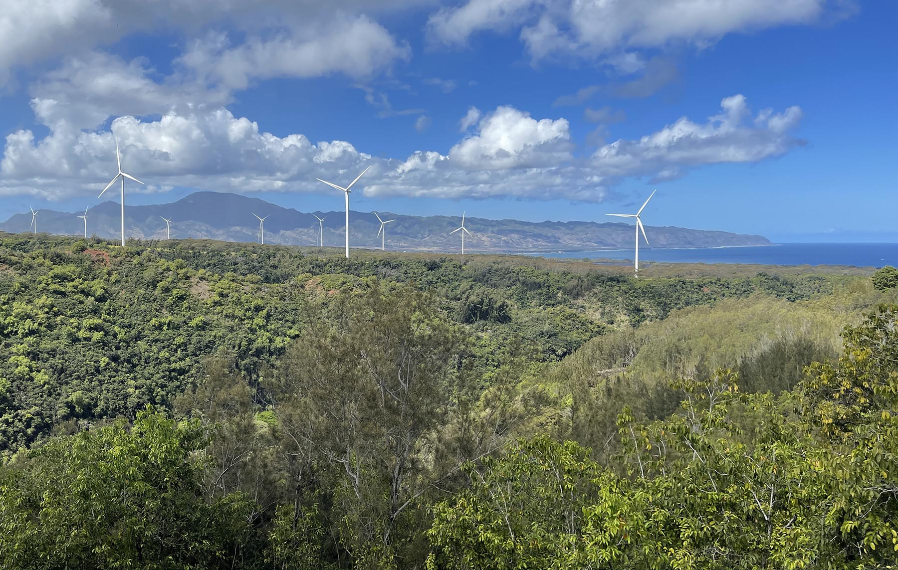 <p>The volunteer opportunity provides spectacular views of the ocean off Oahu's North Shore.</p>
