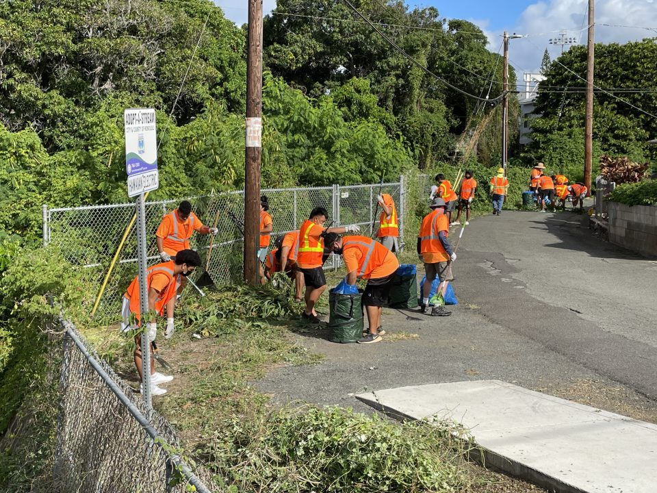 More than two dozen volunteers with the Kaimukī Youth Development Organization (KYDO) will remove overgrown vegetation and litter along Koali Road, between Wai'alae Avenue and the ewa end of Kānewai Community Park. These volunteers will perform the work under the coordination of the city's Mālama O Ka 'Āina (MOKA) community volunteer program, which is administered by the Department of Facility Maintenance's (DFM) Division of Road Maintenance (DRM).
