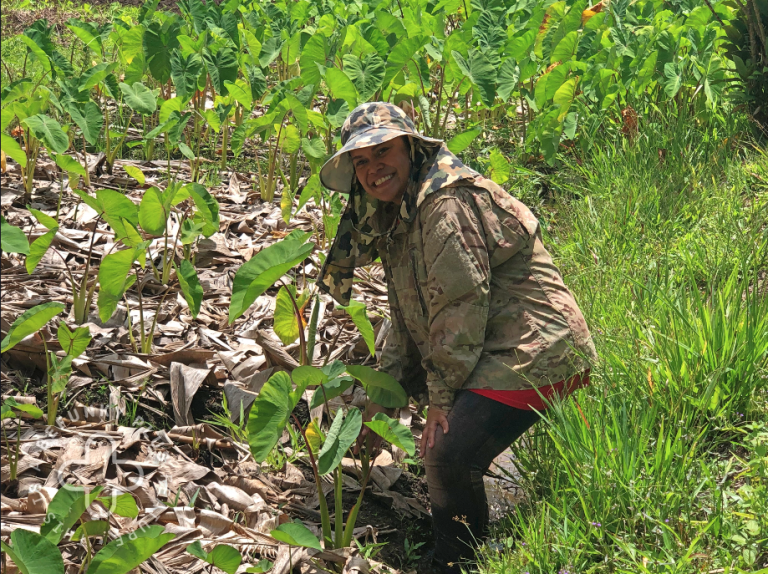 Palau Is Bolstering Food Security With A Mix Of Tradition And Innovation