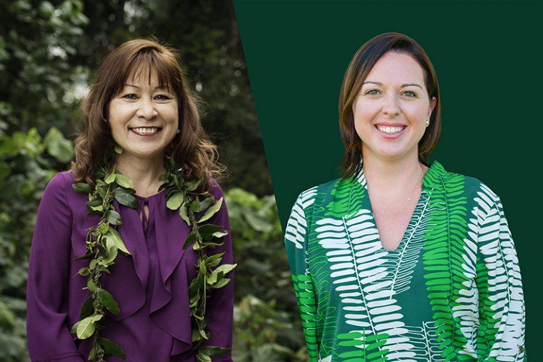 Controversial Former Kauai Prosecutor Wants Her Old Job Back